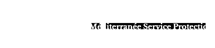 Logo-MSP-blanc pour l'entete